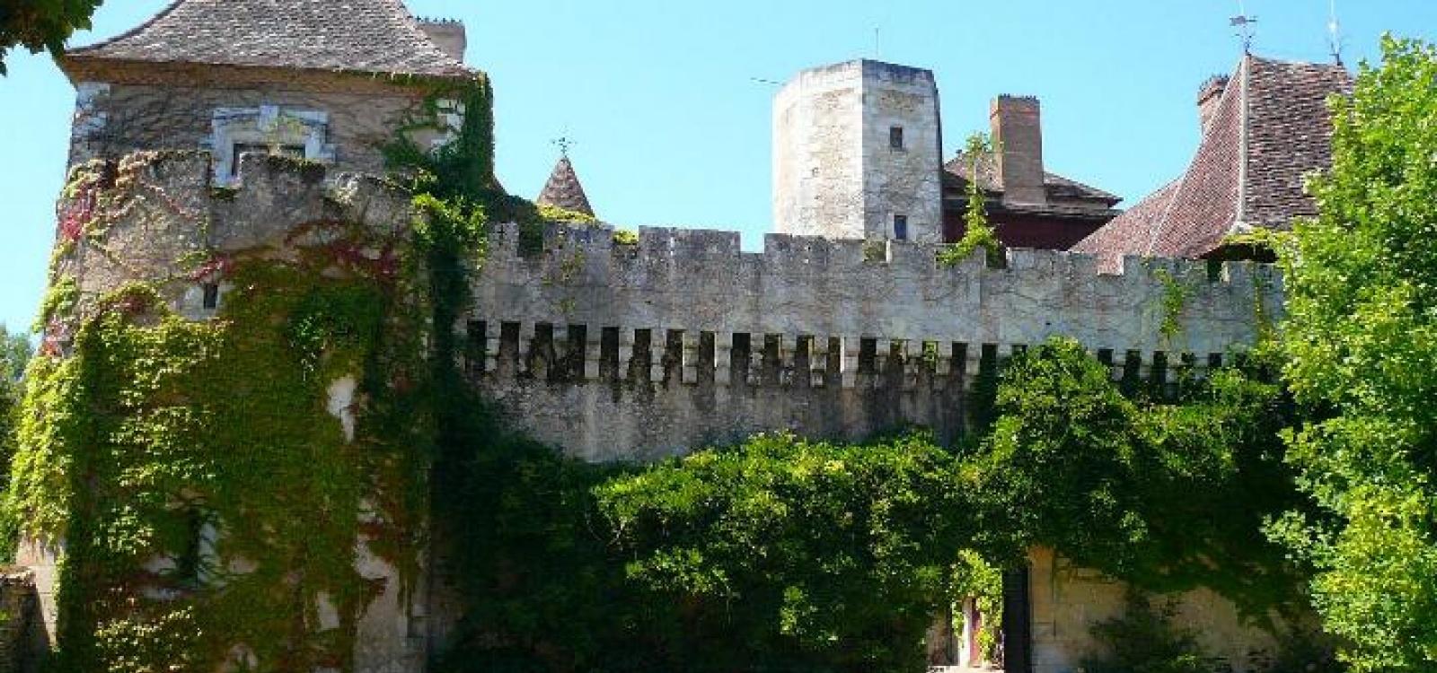 Périgueux,Dordogne,France,Château,1016
